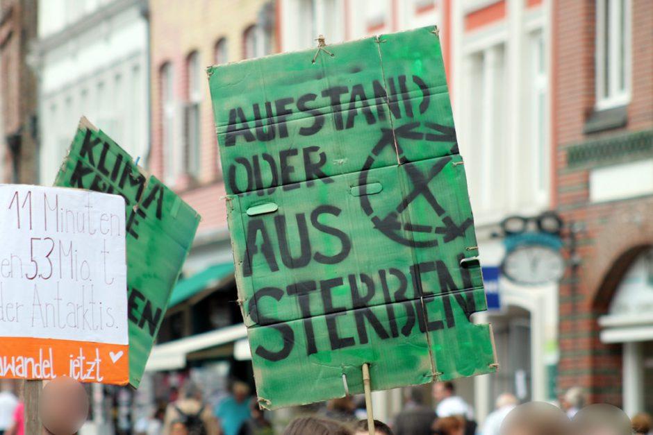 """Plakat """"Aufstand oder Aussterben"""" auf der 1. Sommerferiendemo von Fridays for Future in Lüneburg"""